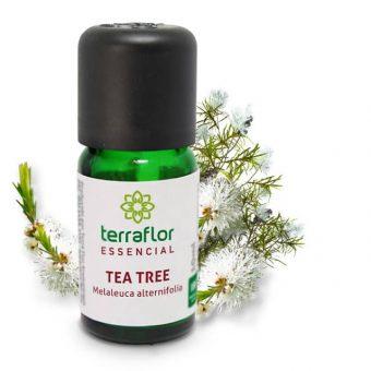 Óleo essencial de tea tree 10ml - imagem meramente ilustrativa