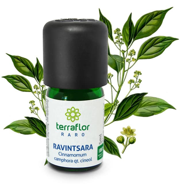 Ravintsara 5ml